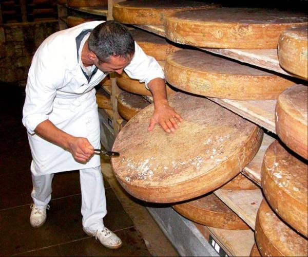 Big Cheese!
